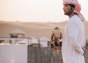 Falcon Dubai